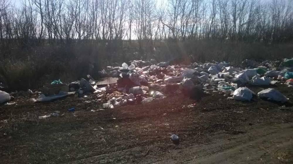 Видовые пейзажи Крыма «украшены» мусорными свалками