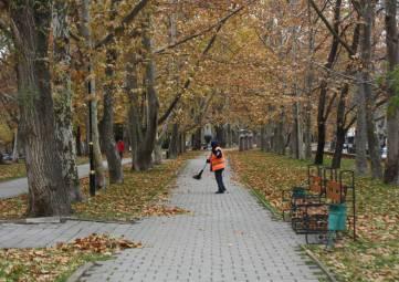 В Феодосии коммунальщики борются с листвой