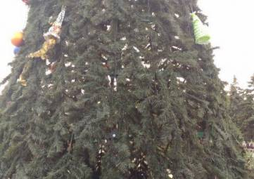 Огни на елке Керчи зажгут 22 декабря