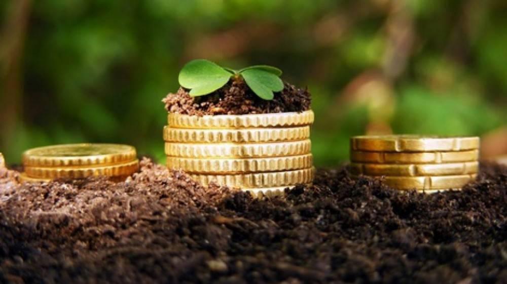 Истекает срок уплаты  сельхозпредприятиями Республики Крым Единого сельхозналога (ЕСХН).