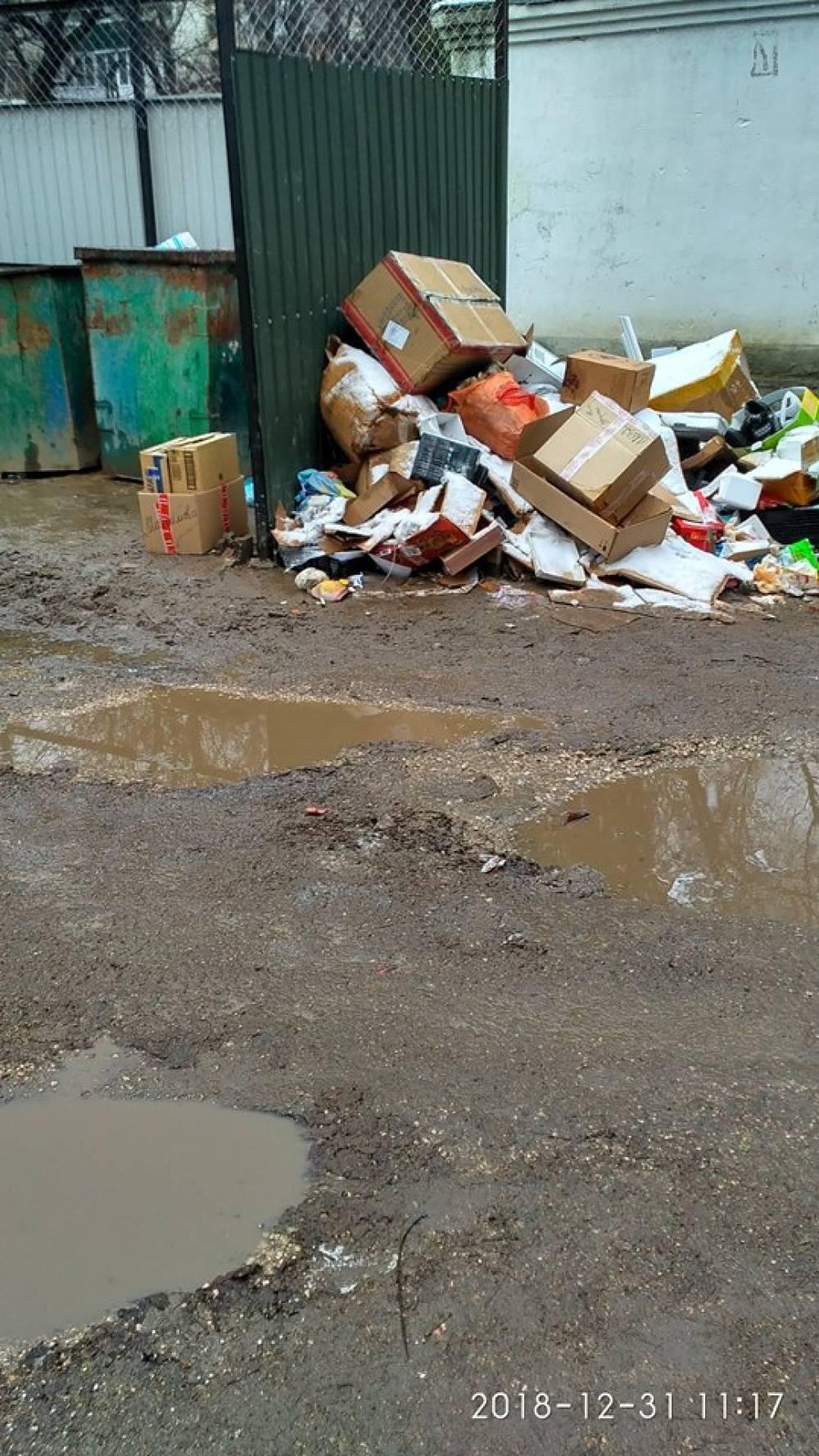 Феодосийский ребус: Как подойти к мусоросборнику, чтобы не испачкаться?