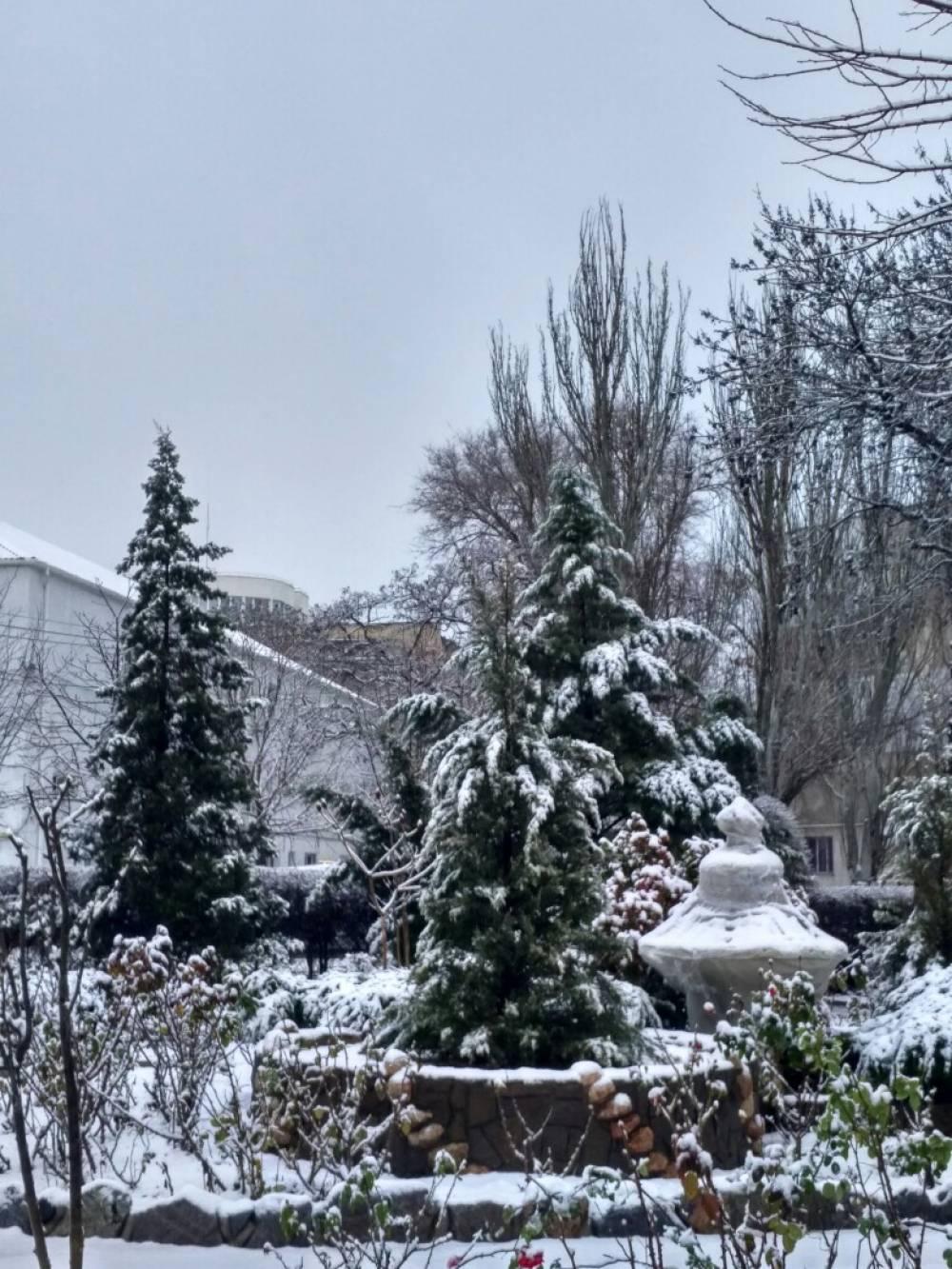 И снова снежок... феосети