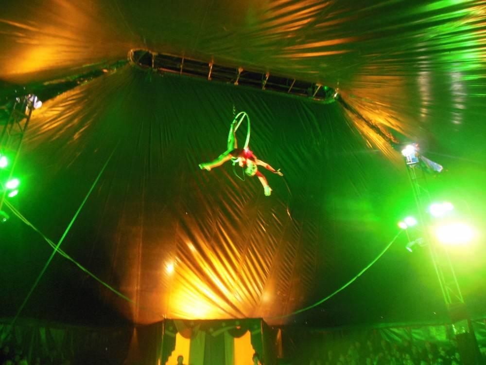 Цирк, цирк, цирк (фоторепортаж)