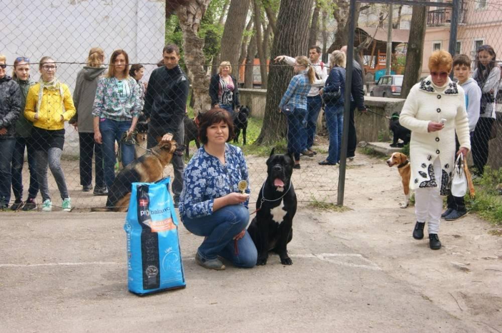 В Феодосии пройдет выставка животных