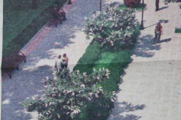 И этот двор на «базаре Старшинова»