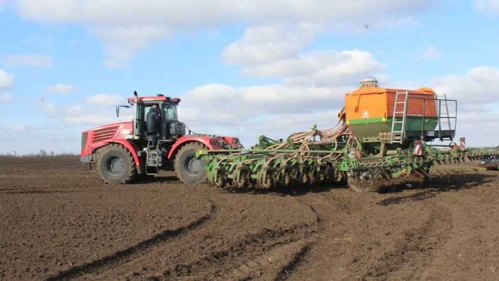 Власти рассказали о ренессансе сельского хозяйства Крыма