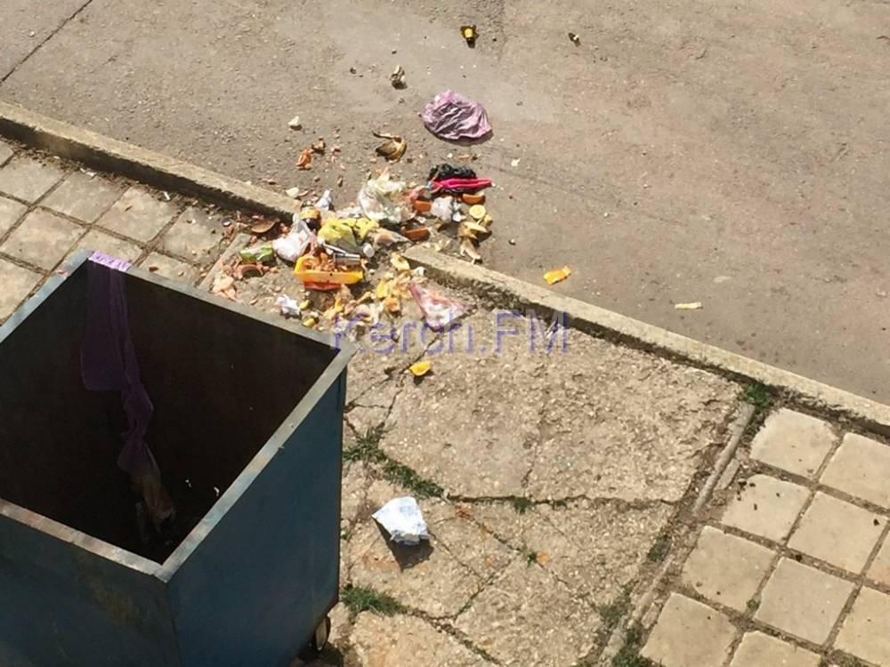"""О """"свинстве"""" мусорного оператора из Керчи"""
