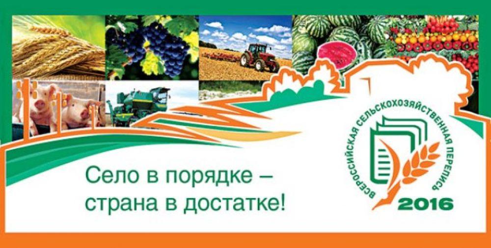 Всероссийская сельскохозяйственная перепись 2016. Село в порядке – страна в достатке!