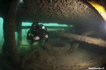 Фоторепортаж дня: Из глубины подводного царства...