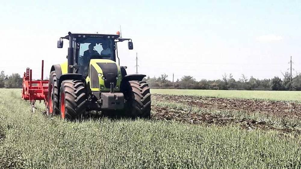 Миллионный урожай зерна планируют собрать в Крыму