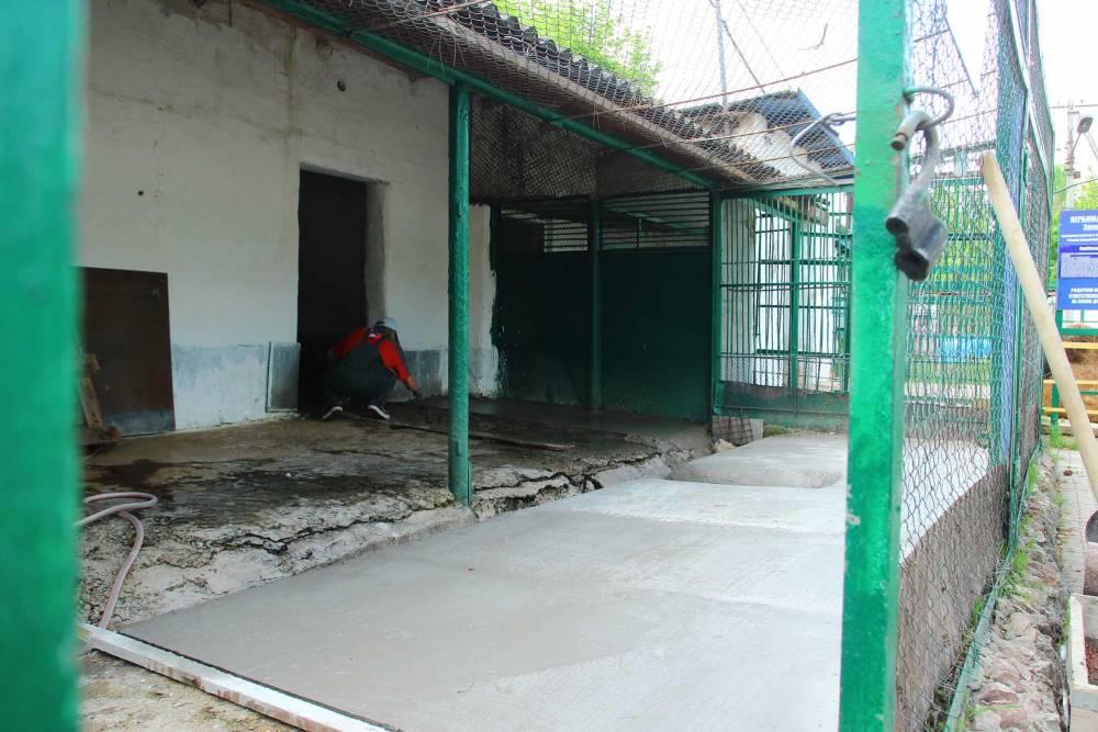 Весеннее обновление Детского парка