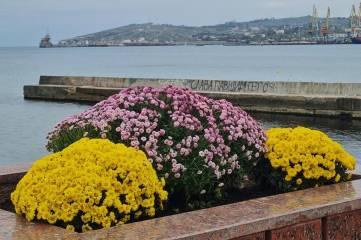 Цветы на набережной в Феодосии вызвали большие обсуждения