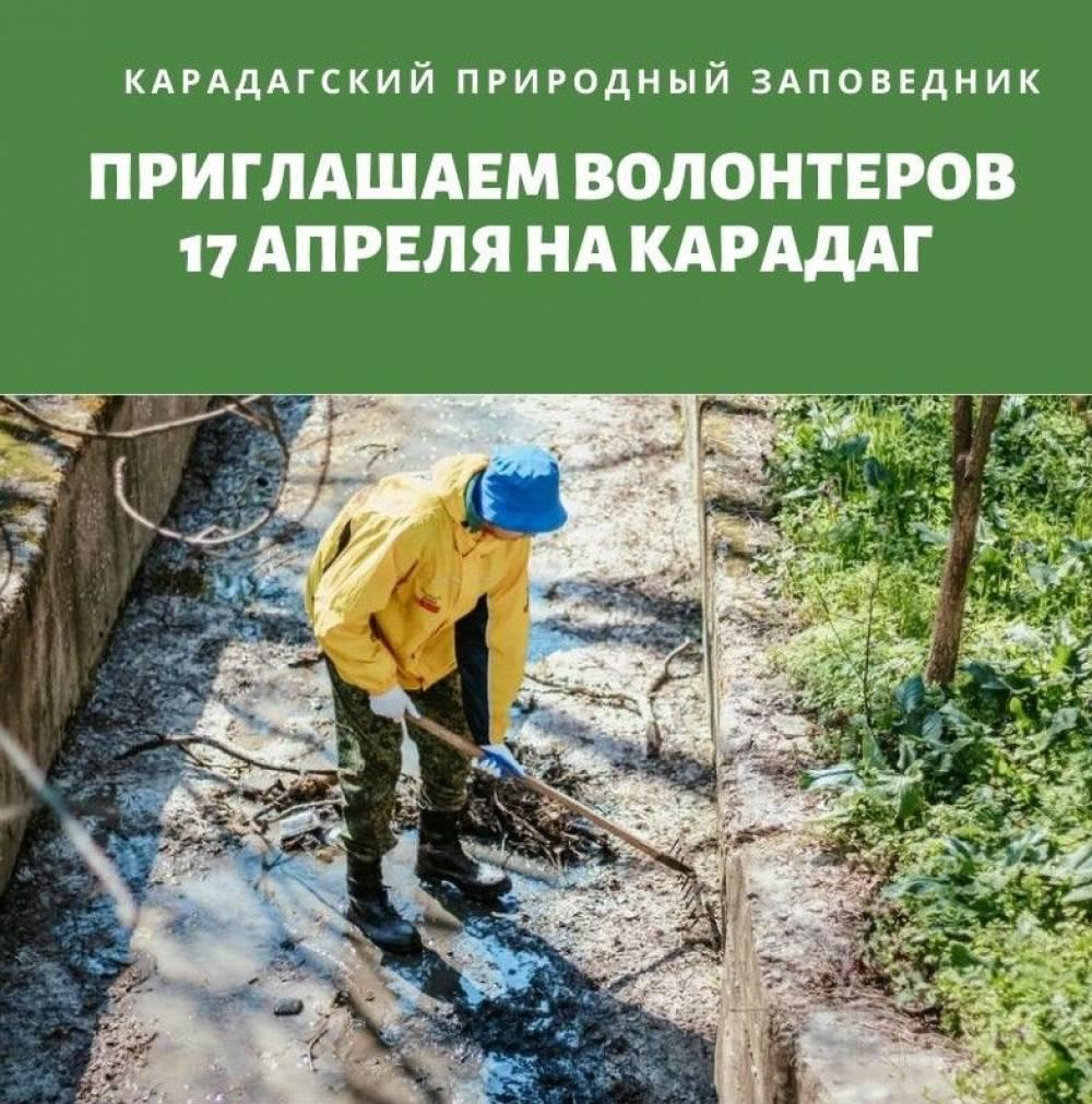 Уборка Карадагского природного заповедника, субботник на Карадаге