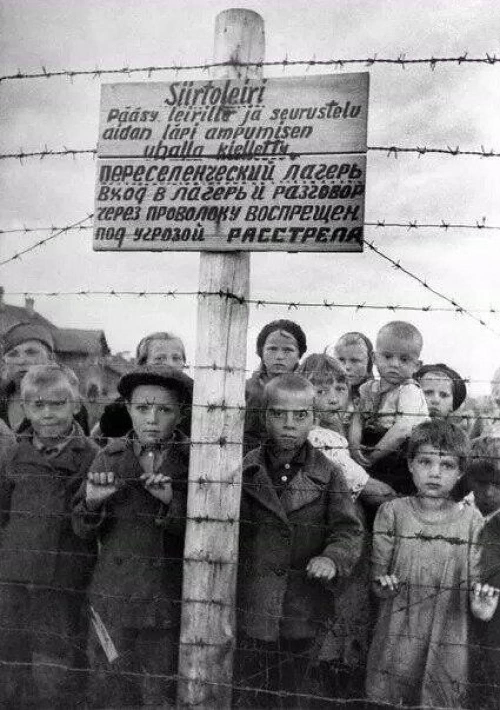 В России создали петицию о признании геноцида советского народа нацистами