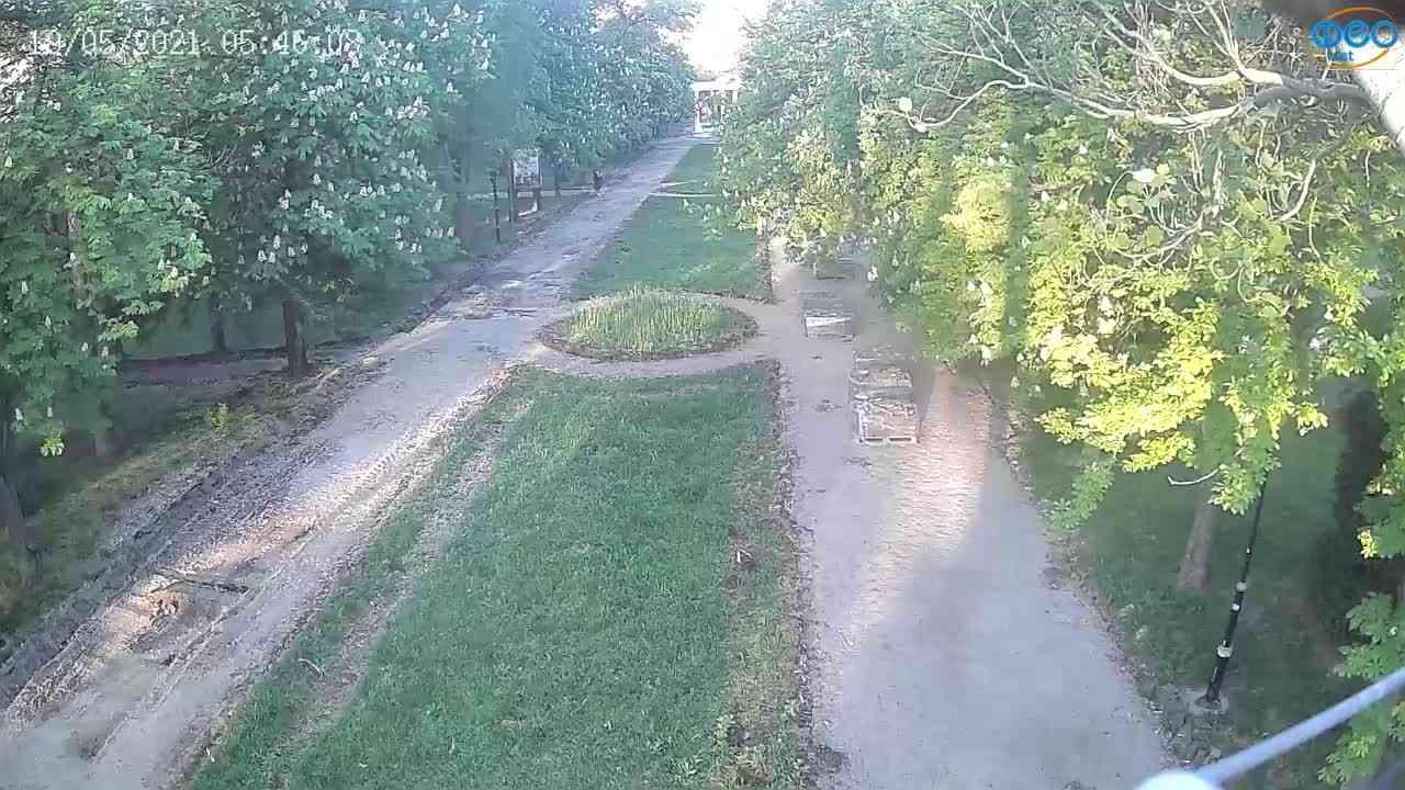 Веб-камеры Феодосии, Памятник Доброму Гению, 2021-05-19 05:45:45